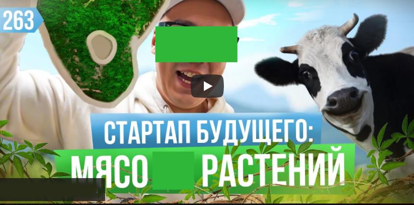 В чем плюсы и минусы растительного мяса? Бизнес на веганах. Greenwise – российский Beyond Meat